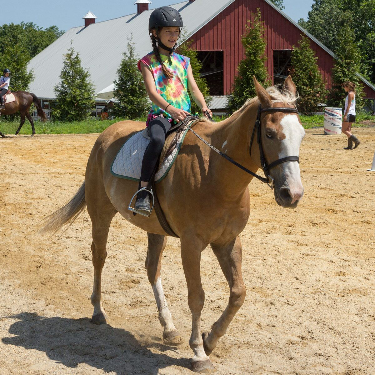 Horseback Riding Camp - Calleva Outdoors I Summer ...
